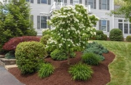 Landscaping Services South Hills