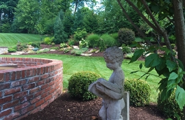 Lawn Services South Hills