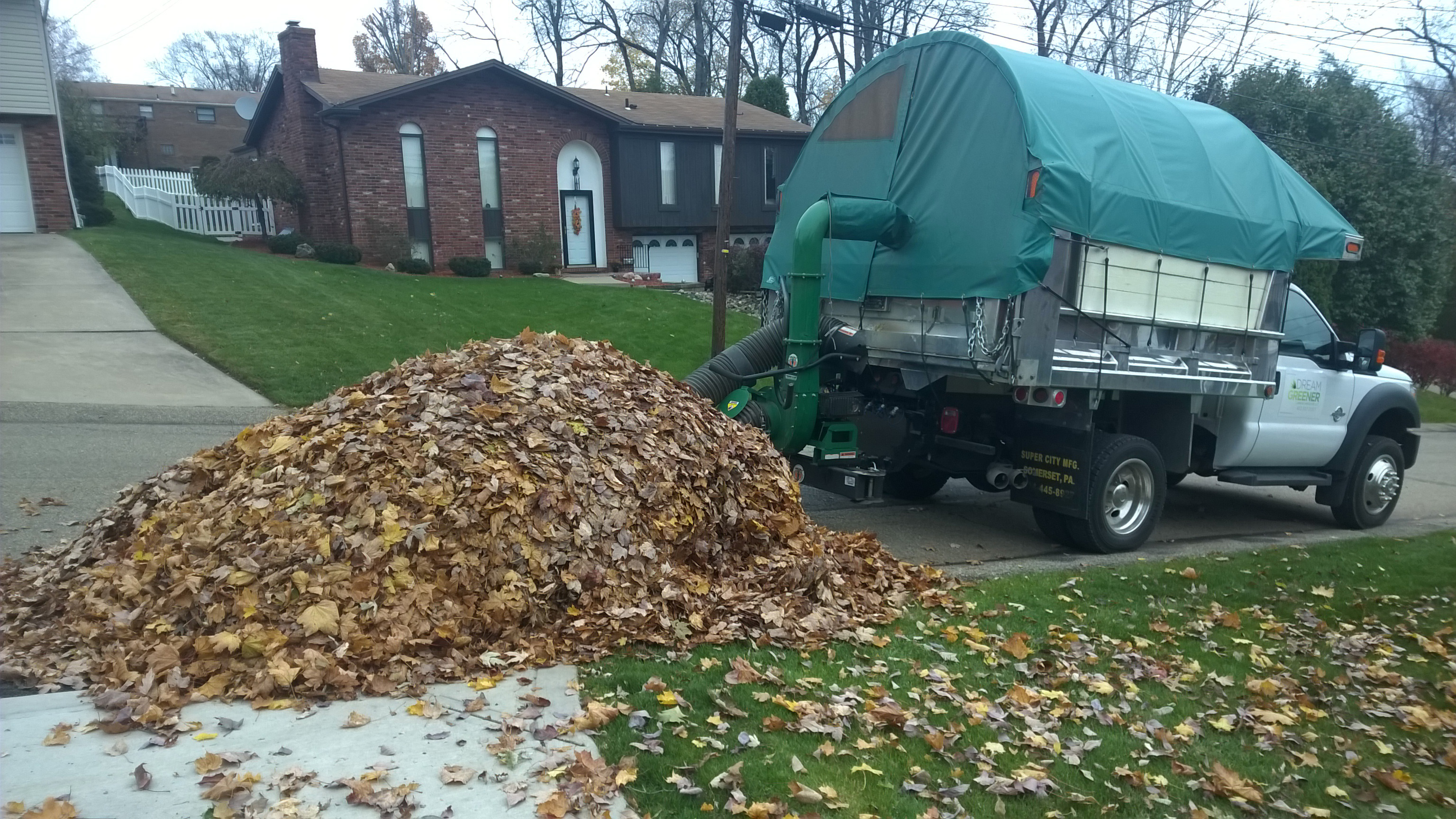 Leaf Removal South Hills