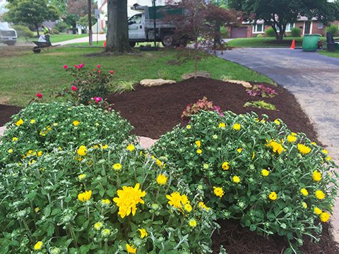 Lawn Composting Pittsburgh