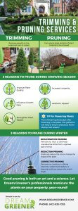 Trimming and Pruning Infographic