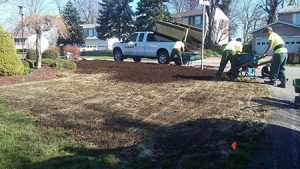 New Lawn Installation Pittsburgh