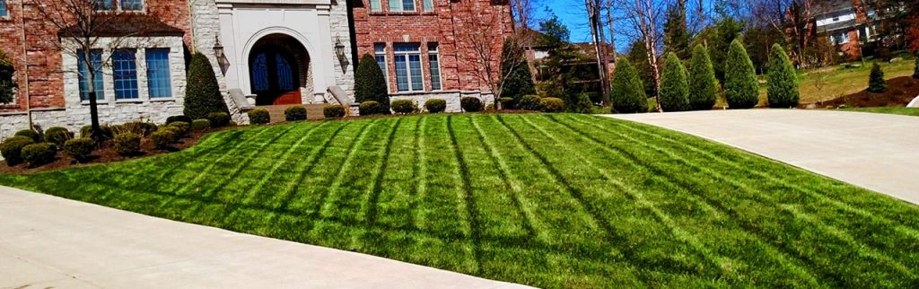 Mt. Lebanon Lawn Care
