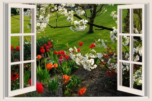 Window_to_Spring_Soil