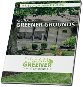 greener-grounds-banner