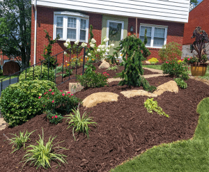 3 Commonly Asked Questions About Mulch Dream Greener