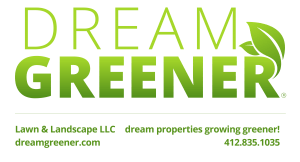 Dream-Greener-Lawn